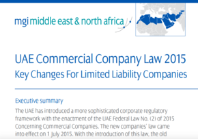 MGI World MGI Worldwide MENA Area news item, White Paper UAE Commercial Company Law screen shot of news item