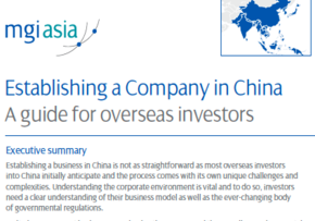 MGI World MGI Worldwide White paper Establishing a Company in China: A guide for overseas investors screen shot