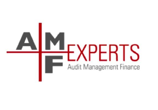 MGI World AMF_Experts logo 518x362