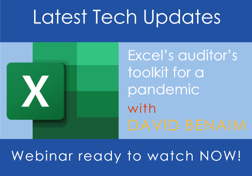 MGI World Excel's auditor's toolkit for a pandemic webinar image with text and Excel logo